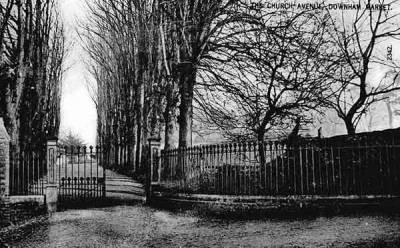 The view along the Church Avenue, c.1903.  (We still have the right-hand row of lime trees, pollarded in 2006 to help keep them going.)